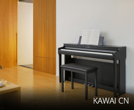 Kawai CN
