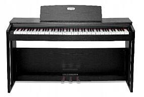 Pearl River VP-119S Svart Digital Piano